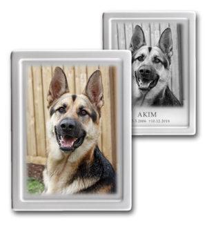Foto na psí náhrobek