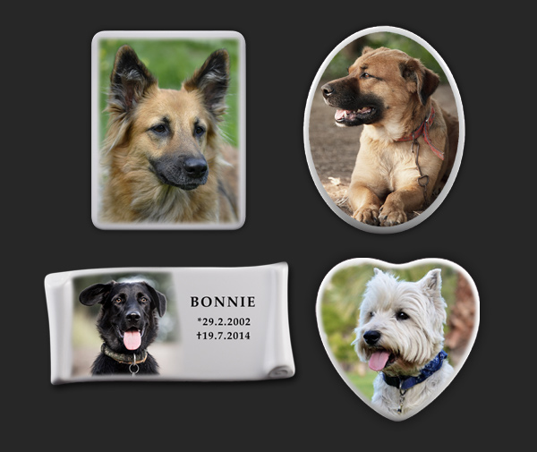 Foto na psí hřbitov, pomník - psí hrob
