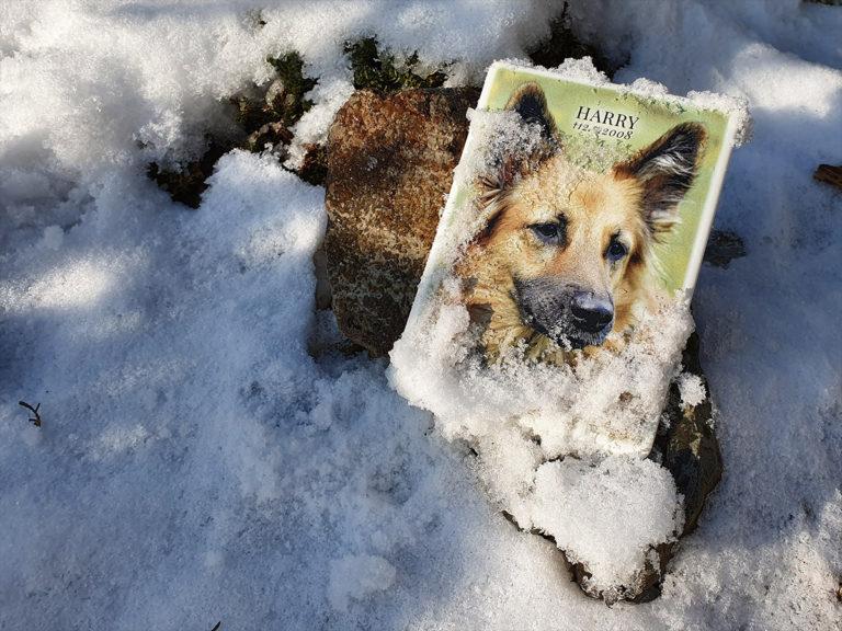 náhrobek pro psa - odolnost v exteriéru